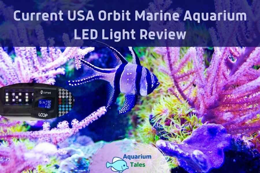 Current USA Orbit Marine Aquarium LED Light Review by Aquarium Tales
