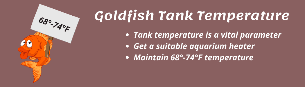 Goldfish Tank Temperature Guide