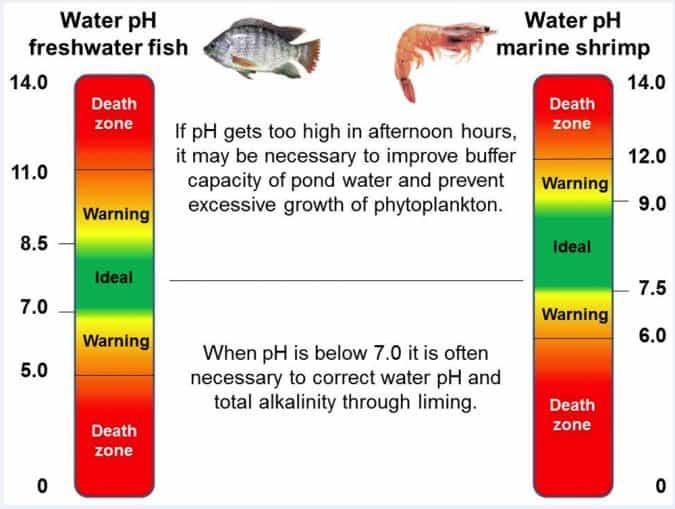 Ideal pH for aquariums