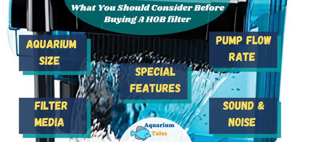 What you should consider before buying a HOB filter
