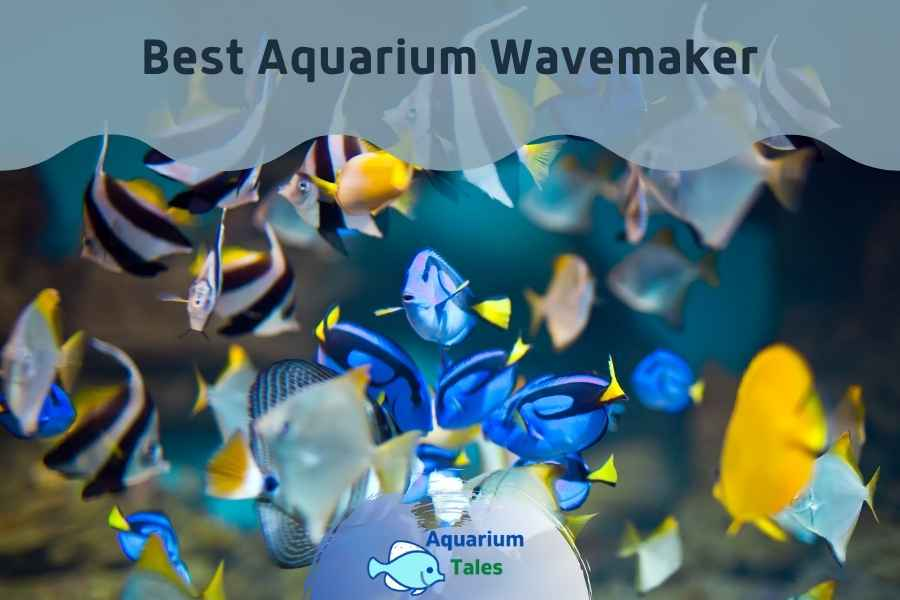 Best Aquarium Wavemaker Review by Aquarium Tales