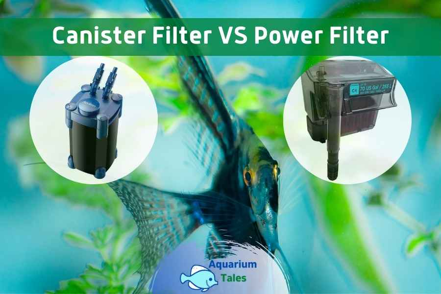 Canister Filter VS Power Filter by Aquarium Tales