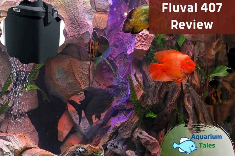 Fluval 407 Review by Aquarium Tales