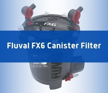 Fluval FX6 As Alternative