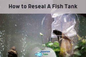 How to Reseal A Fish Tank by Aquarium Tales