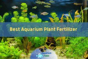 The Best Aquarium Plant Fertilizer by Aquarium Tales