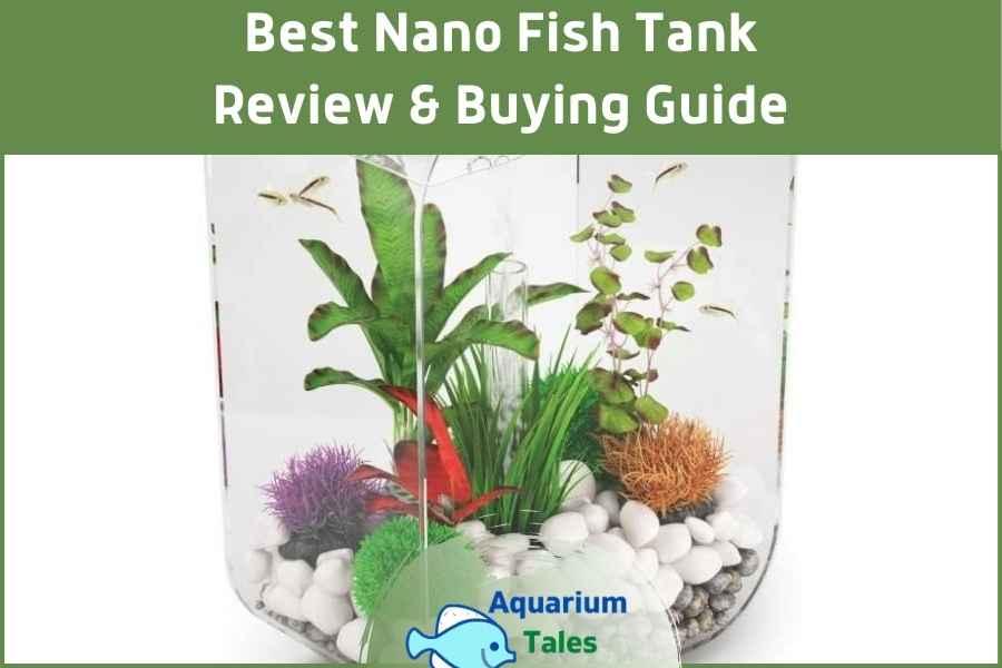 Best Nano Fish Tank by Aquarium Tales