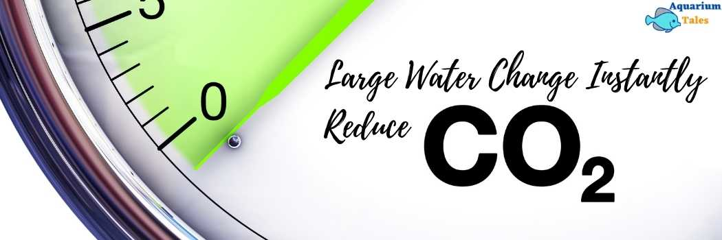 Large Water Change reduces CO2