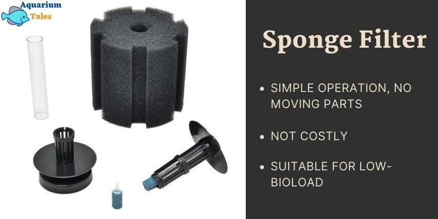 Sponge filter in a nutshell