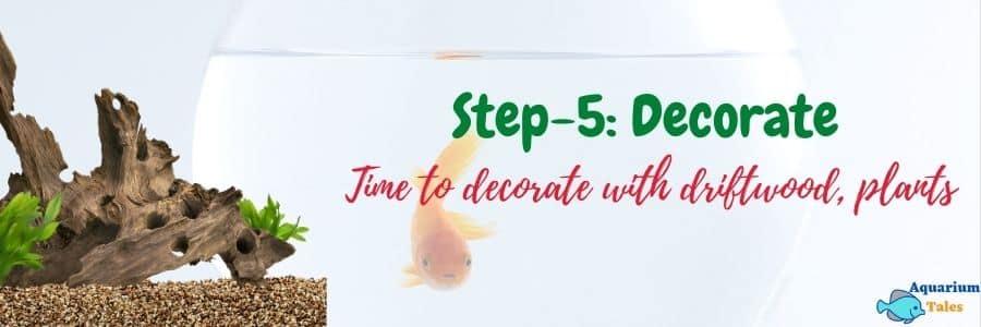 Step-5 Decorate the aquarium