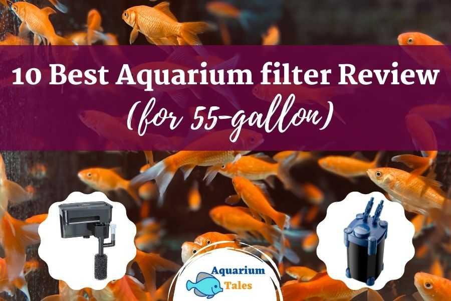 best 55 gallon aquarium filter