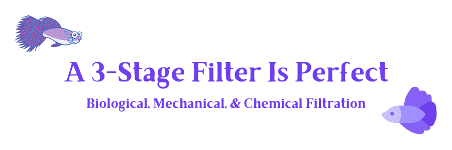 filtration stage for betta filter