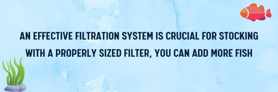 filtration system - for stocking