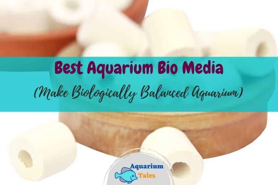 Best Aquarium Bio Media