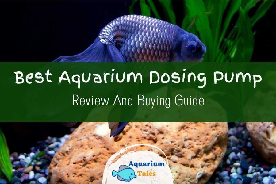 Best Aquarium Dosing Pump