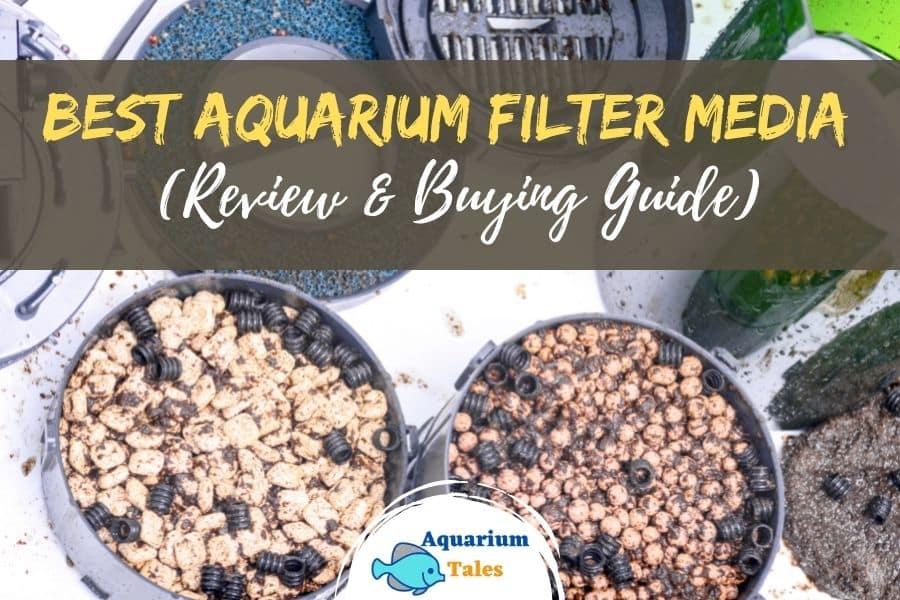 Best Aquarium Filter media