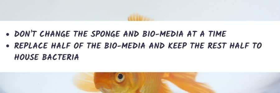 How To Change Aquarium Filter Cartridges - 3 Stages