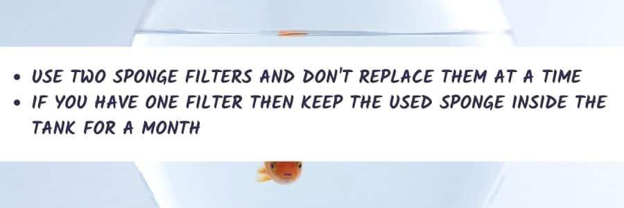 How To Change Aquarium Sponge Filter Cartridges