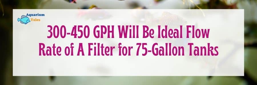 Ideal flow rate of a filter for 75 gallon tank
