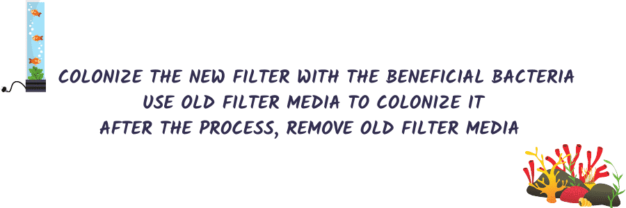 Method-3 Colonizing The New Filter