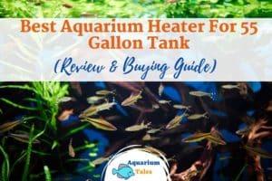 Best Aquarium Heater For 55 Gallon Tank