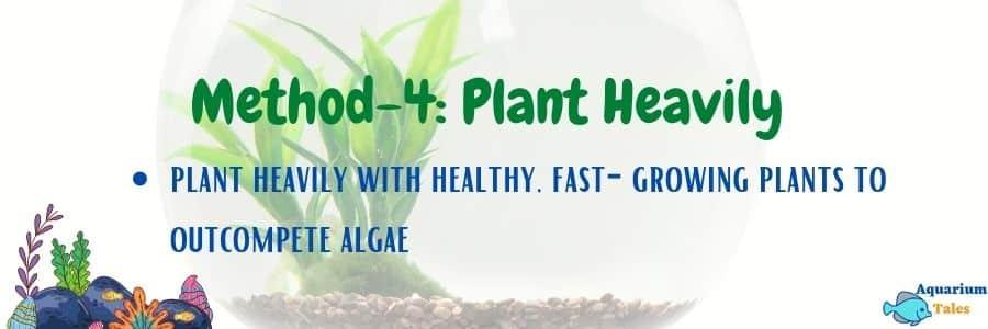 Method-4 Plant Heavily