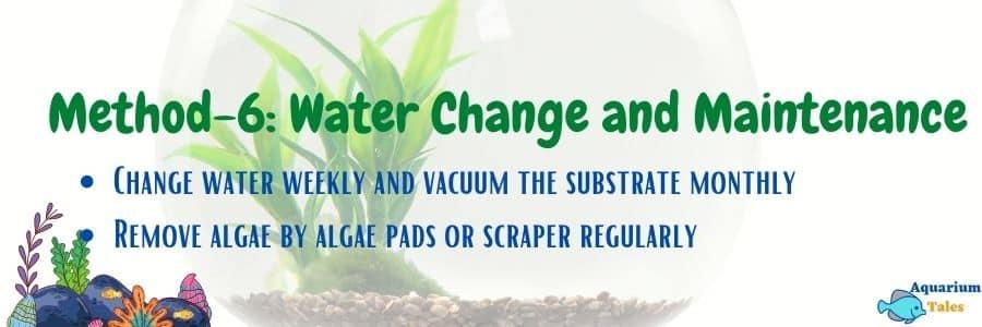 Method-6 Water change and maintenance