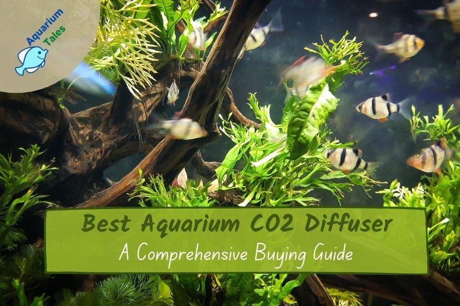Best Aquarium CO2 Diffuser