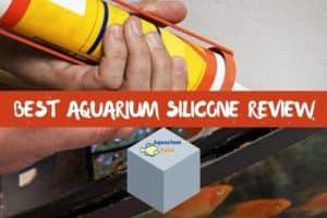 Best Aquarium Silicone