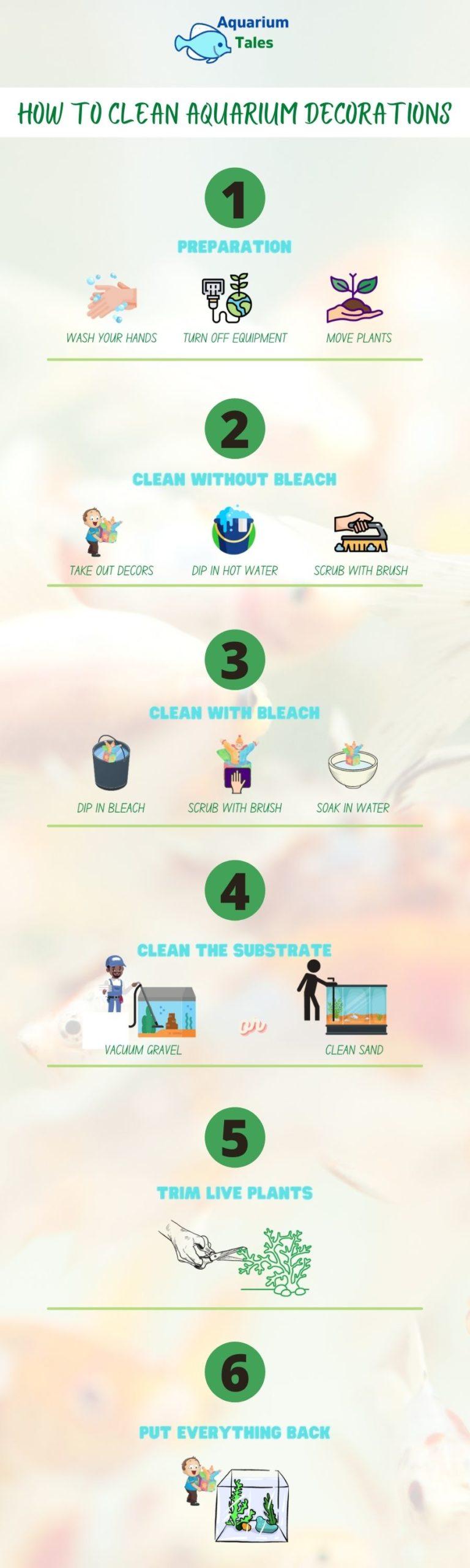 How To Clean Aquarium Decorations - Infographic