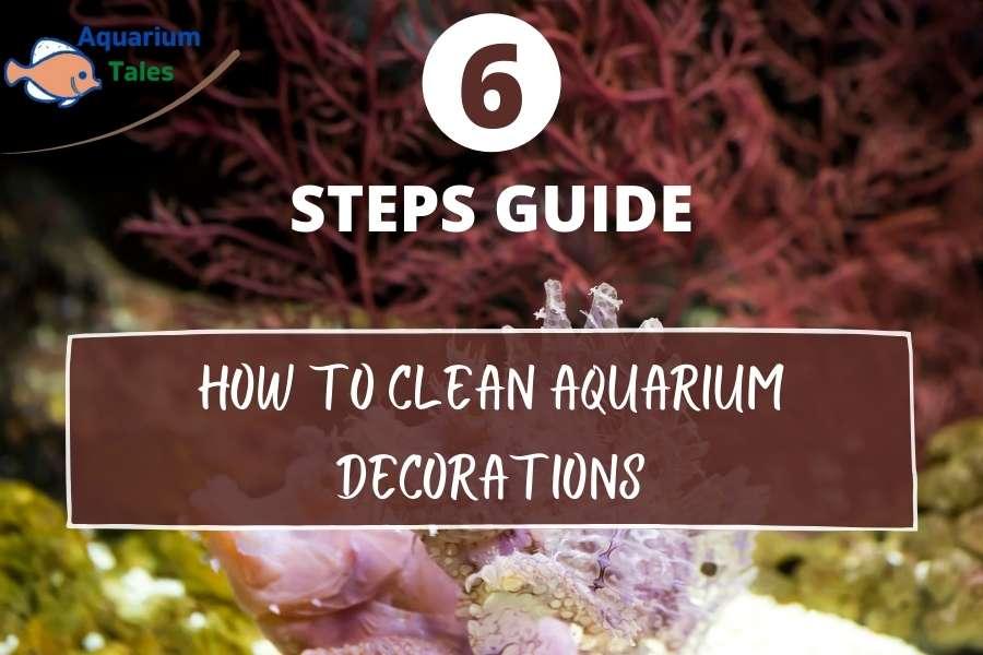 How To Clean Aquarium Decorations