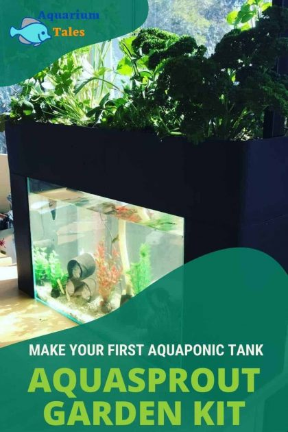 Aquasprouts Garden Review (Make Your First Aquaponic Tank)