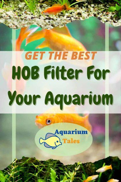 Best HOB Filter for Aquarium