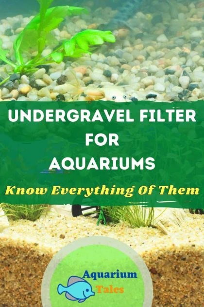 Best Undergravel Filter - Benefits, how it works & how to maintain