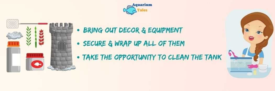 Bring out Décor and equipment, clean the tank