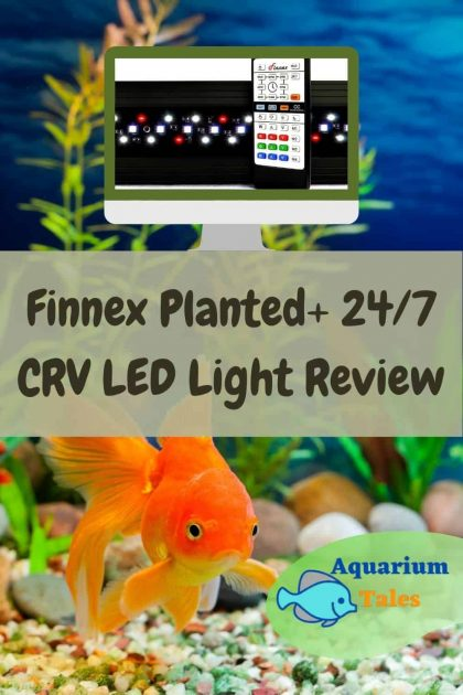Finnex Planted+ 24_7 CRV Review