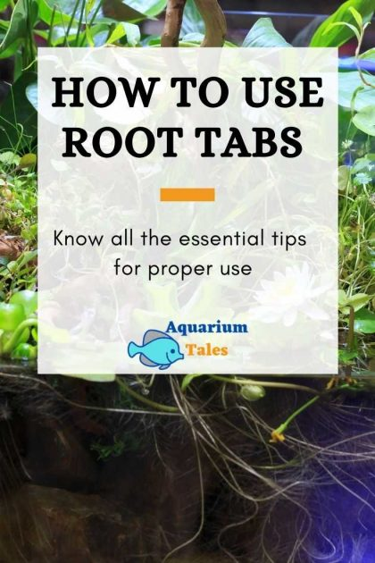 How to use root tabs