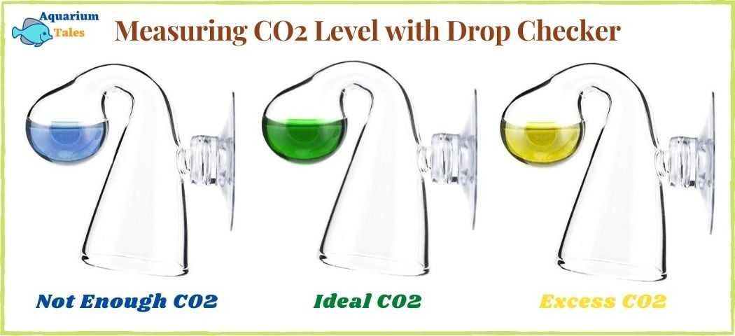 Measuring CO2 level with Drop checker