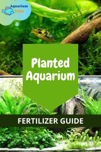 Planted Aquarium Fertilizer Guide