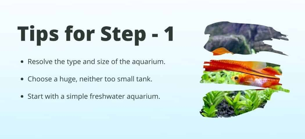 Tips no 1 on how to Start a fish tank