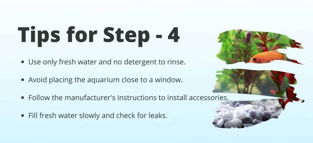 Tips no 4 on how to Start a fish tank