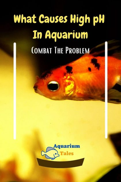 What Causes High pH In Aquarium