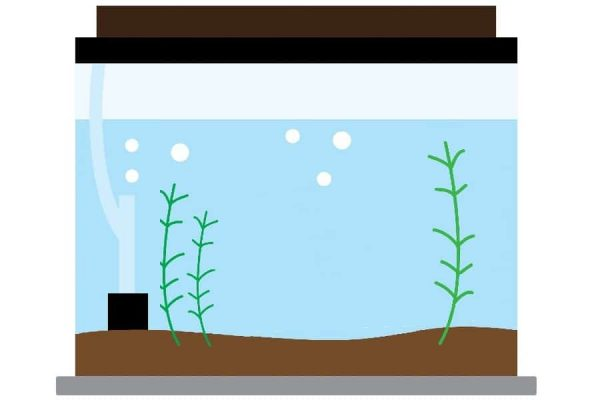 filter for self sustaining tank