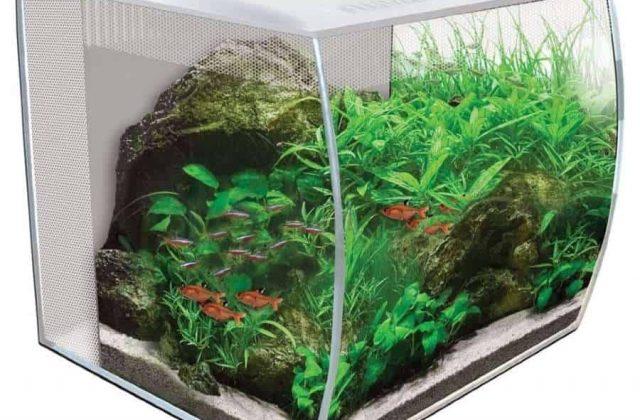 fluval flex 57l aquarium review
