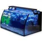hygger Horizon 8 Gallon LED Glass fish tank Aquarium Kit