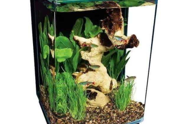 marineland portrait glass led fish tank